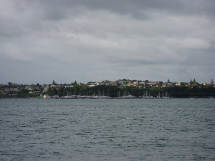 Okahu bay view from the ferry to Devenport